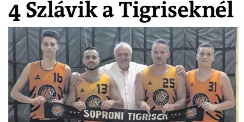 Négy Szlávik a Tigriseknél